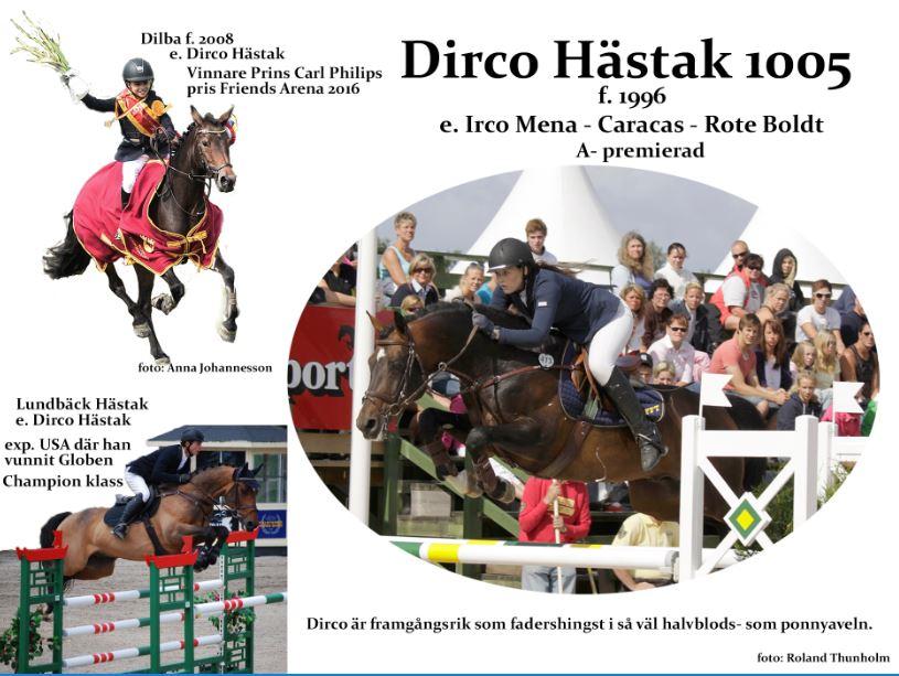 Dirco Hästak e. Irco Mena - Caracas
