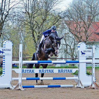 Utrillo Hästak