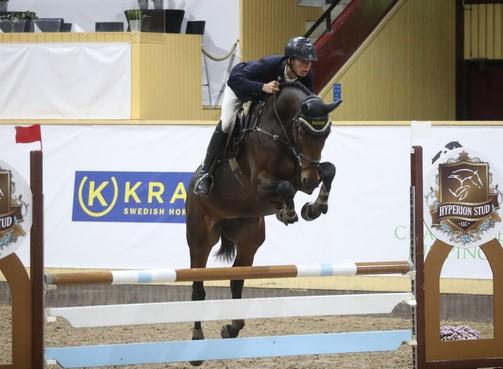Vega Hästak