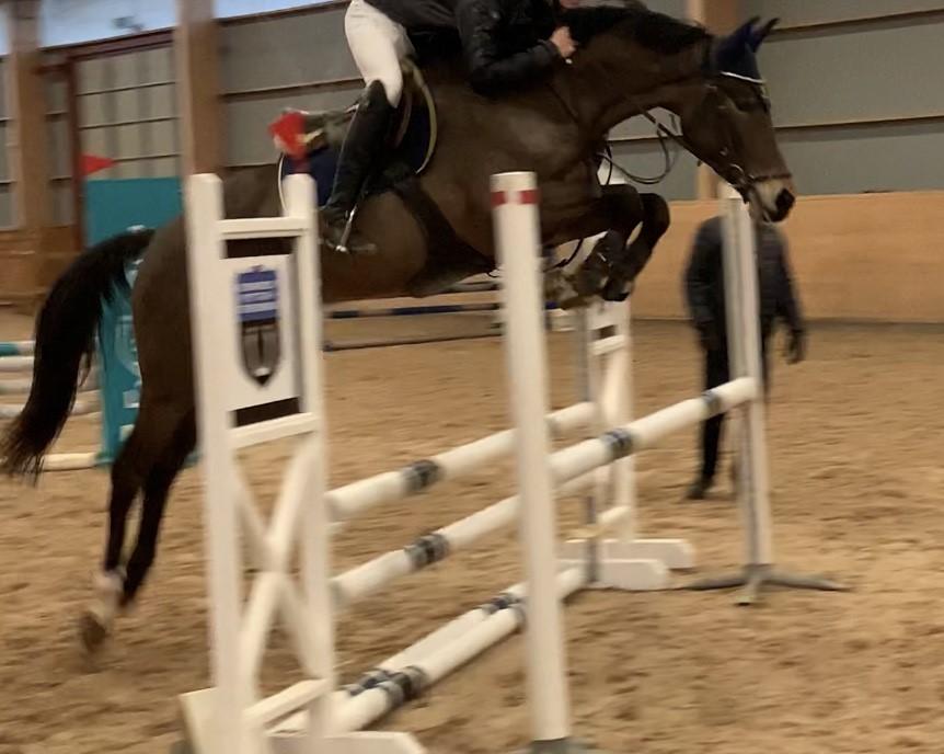 Vilja Hästak